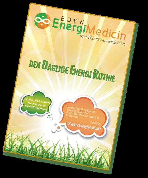 Hæfte med den Daglige Energi Rutine