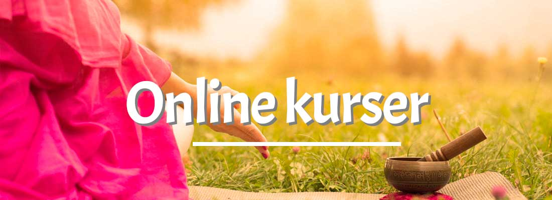 Online kurser i Energi Medicin