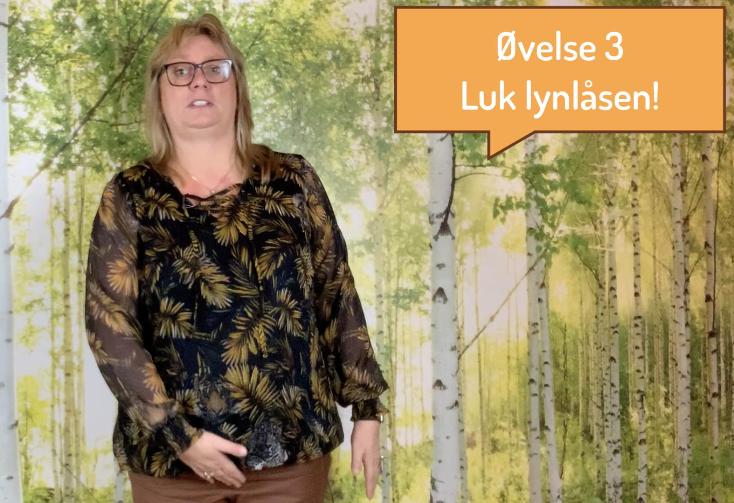 Luk Lynlåsen1