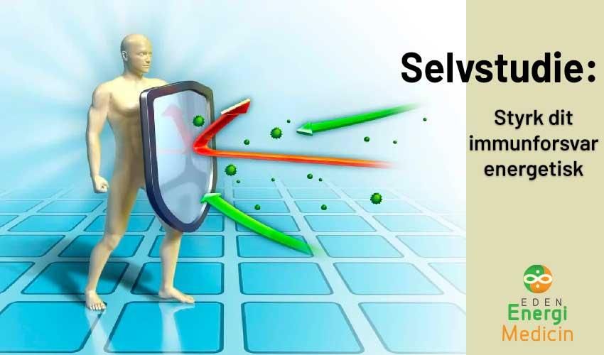 Selvstudie, Styrk dit immunforsvar og dit energifelt